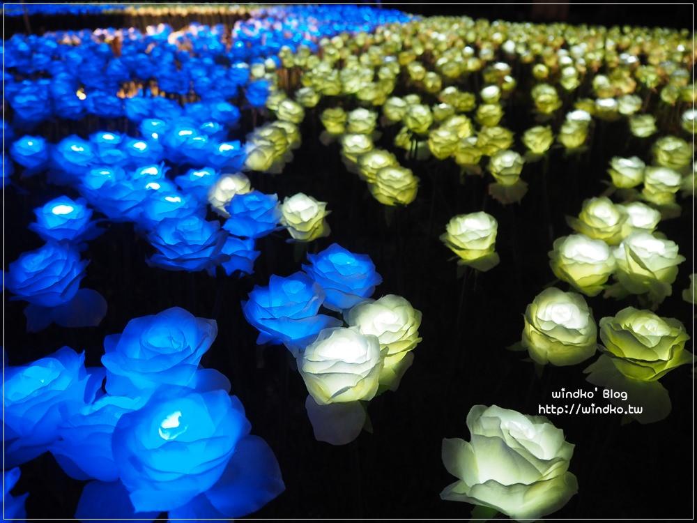 高雄景點∥ 旗津地景藝術夜晚超美麗!彩色玫瑰花燈海&黃澄麥穗,推薦夜景