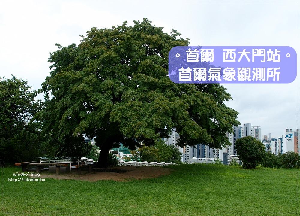 首爾韓劇景點∥ 屋塔房王世子、河伯的新娘2017劇中的楓樹就在首爾氣象觀測所서울기상관측소_近慶熙宮