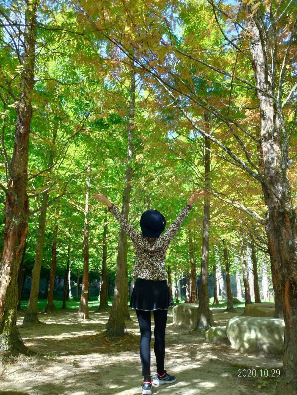 照片日誌∥ 用FB寫日記★2020/10/01~10/31