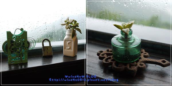 2012sunnyroom_024.jpg