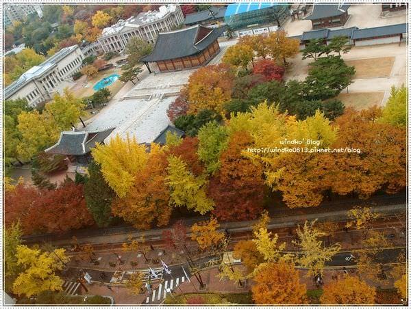 fall_022.JPG