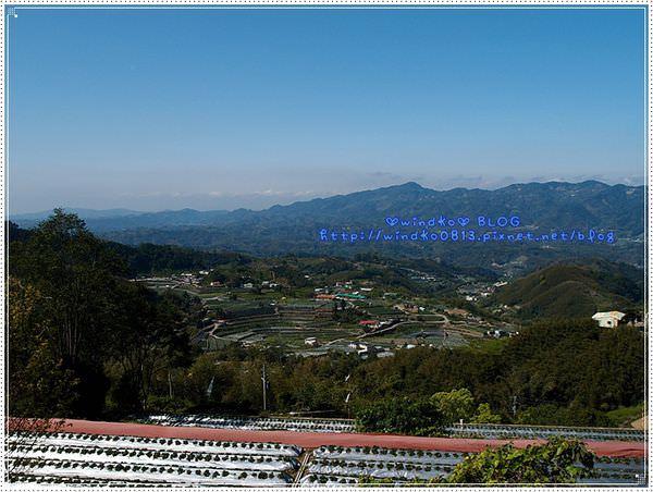 20140222_naifuka_095.JPG
