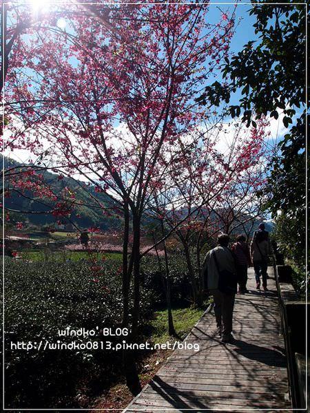 20150131_79.JPG