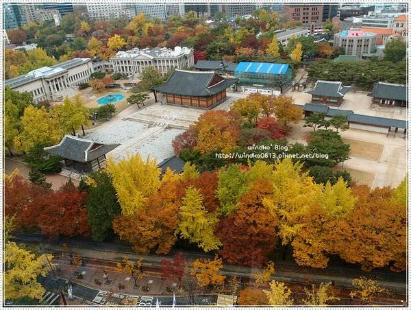 fall_026.JPG