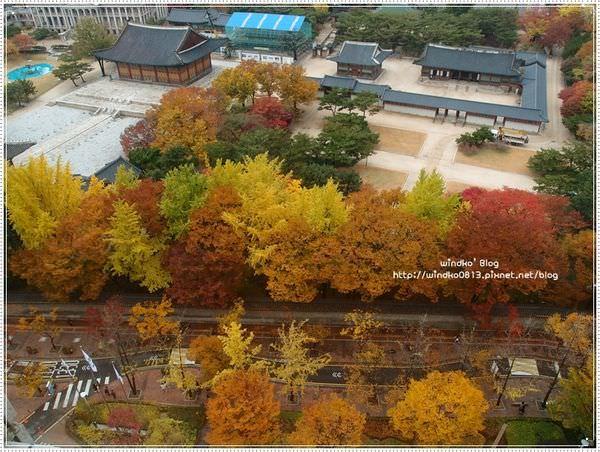 fall_020.JPG